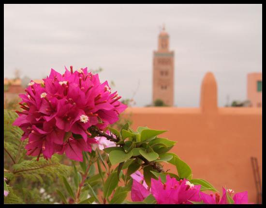 Riad Dar Atta Foto