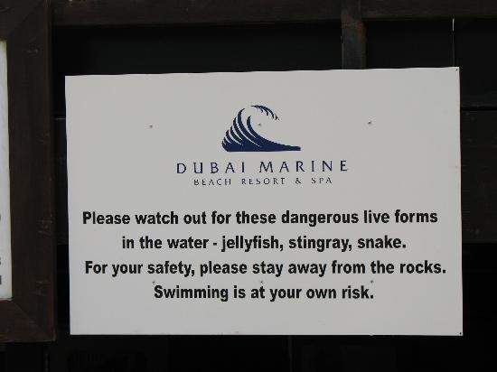 Dubai Marine Beach Resort and Spa: Worth reading