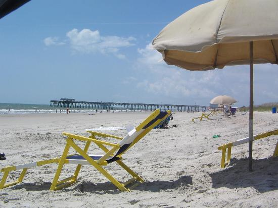 Best South Carolina Beach Rentals Vacation Rentals with