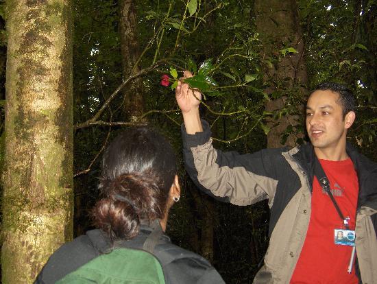Nationalpark Monteverde, Costa Rica: Our tour guide, Roy