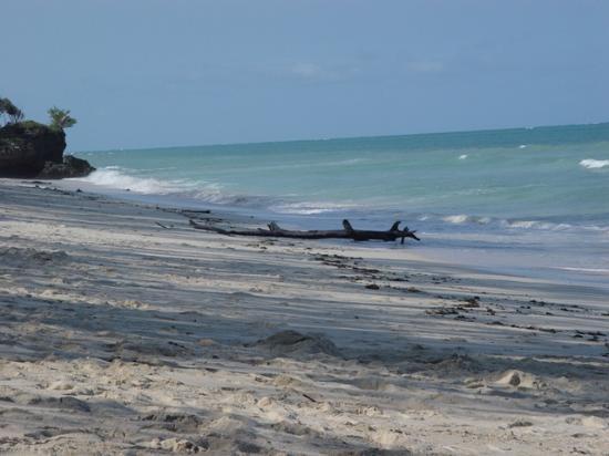 Kinondo Poa: The deserted beach