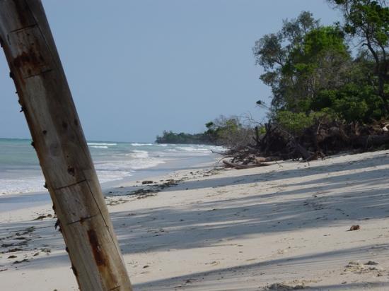 Kinondo Poa: The beach