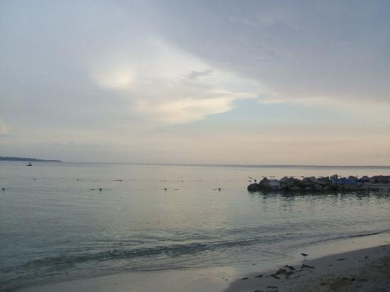 View From Nude Side - Picture Of Hedonism Ii, Negril -3764