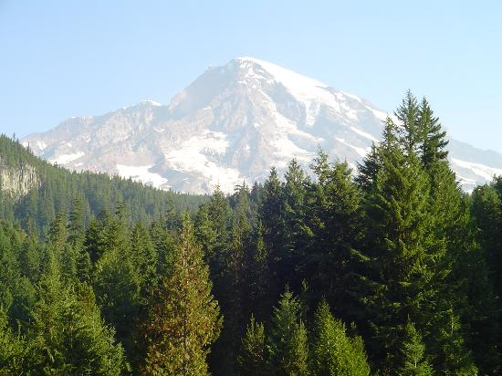 National Park Inn at Mount Rainier: Mount Rainier (It really exists!!)