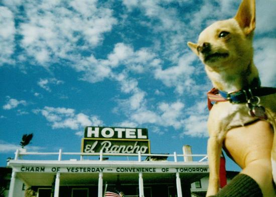 El Rancho Hotel & Motel: Floyd at the El Rancho Hotel