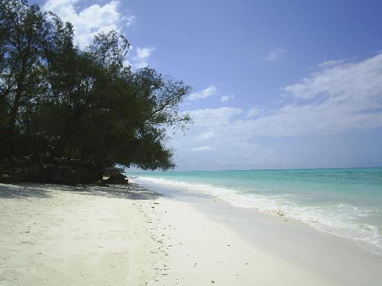 Pongwe Beach Hotel: Beach heading North