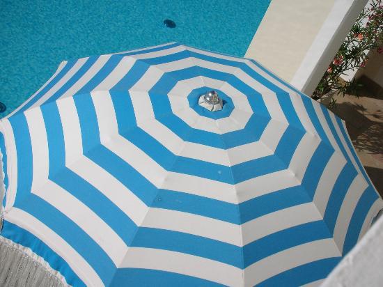 Hotel Casa Bianca al Mare Photo