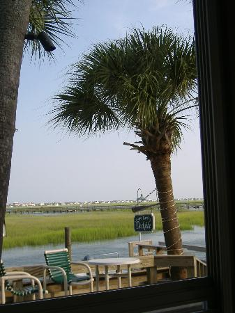 Ellington at Wachesaw Plantation East: Marsh walk at Murrell's inlet