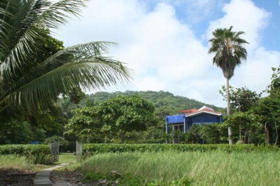 Hotel Casa Azul: Here's the hotel