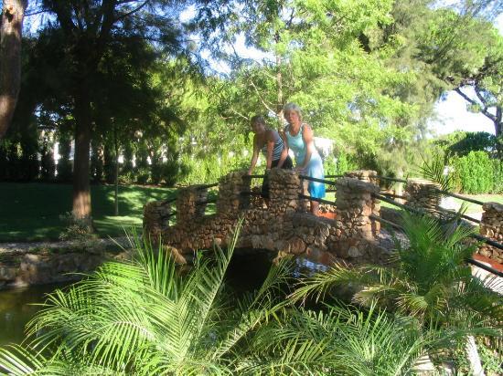 Falesia Hotel: Gardens