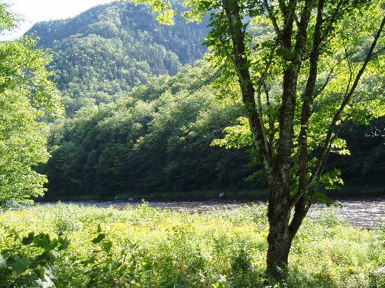 Big Intervale Fishing Lodge: view from the lodge