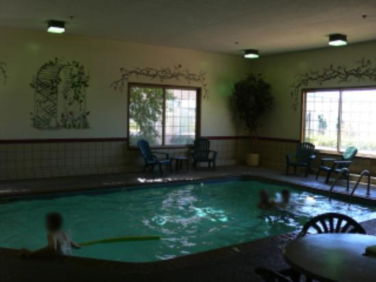 Country Inn & Suites by Radisson, Chanhassen, MN: the pool