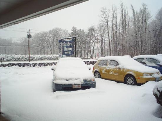 Golden Manor Motel 사진