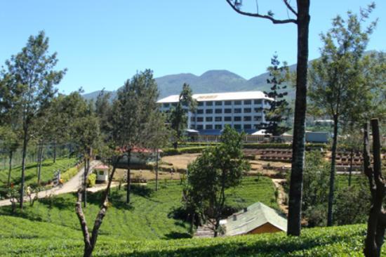 Ceylon Tea Trails - Relais & Chateaux: Tea Factory