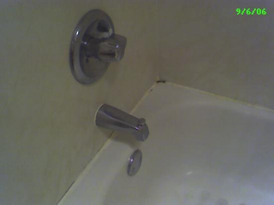 Wyndham Garden Huntsville Airport: The bathtub when I checked in.