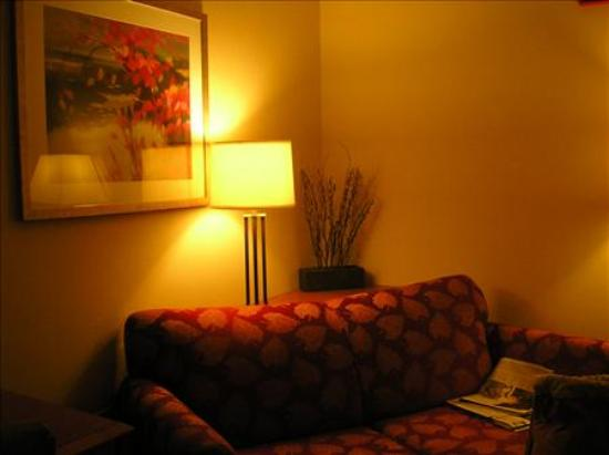 Fairfield Inn & Suites Germantown Gaithersburg: The living room