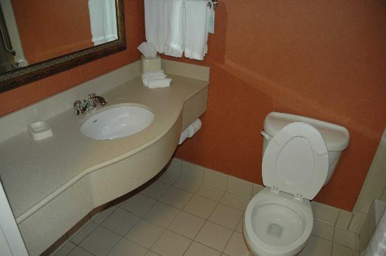 Hilton Garden Inn Chicago/Tinley Park : Clean bathroom, decent water pressure, no problems