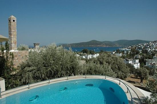 Ada Hotel : The presidential suite private pool (this is shared by one other suite.)