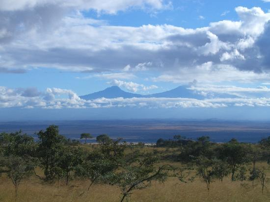 Ecosistema de Amboseli, Kenia: Views towards Kilimanjairo