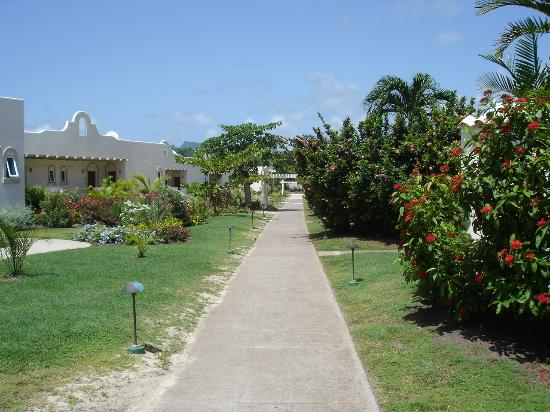 Spice Island Beach Resort: Well maintained resort grounds