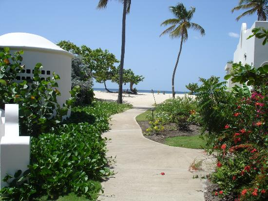 Spice Island Beach Resort: Walkway to Grand Anse beach