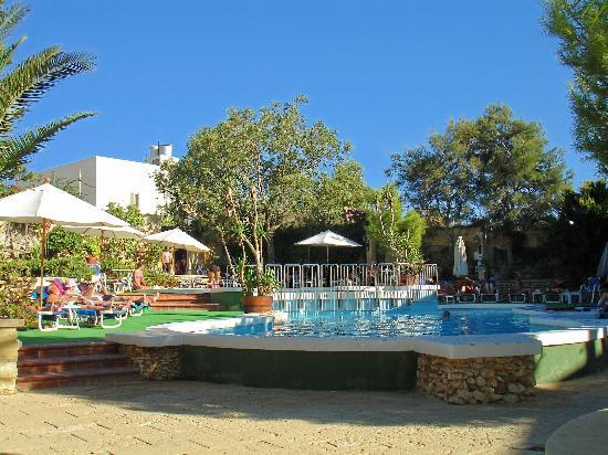 Cornucopia Hotel: pool area