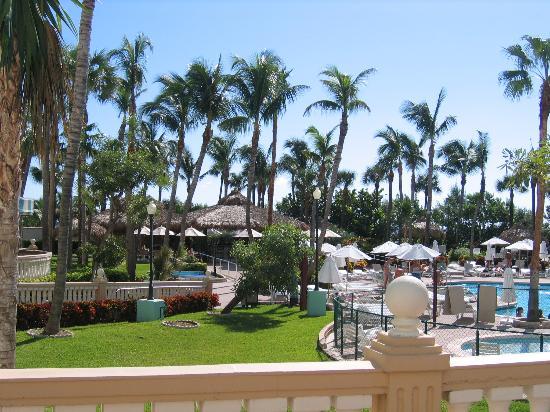 fabulous beachfront riu pool picture of hotel riu plaza. Black Bedroom Furniture Sets. Home Design Ideas