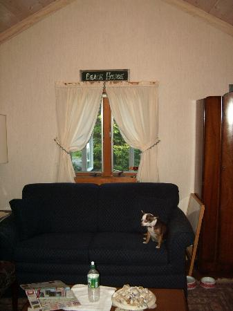 The Ogunquit Inn: Our Dog inside the cottage