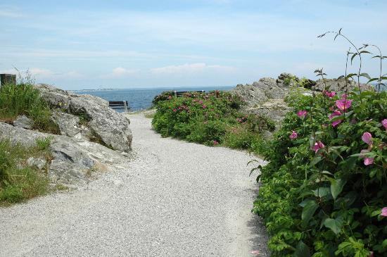 Marginal way, walk around the ocean