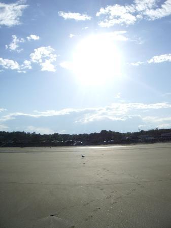 Ogunquit Beach and the Sunshine
