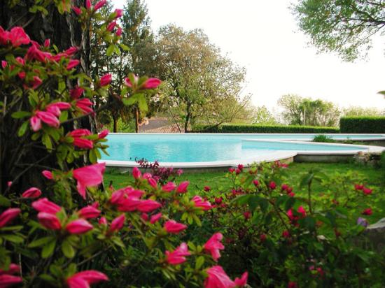 Il Giardino di Diana Bed and Breakfast