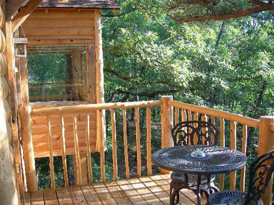 Treehouse Cottages: view