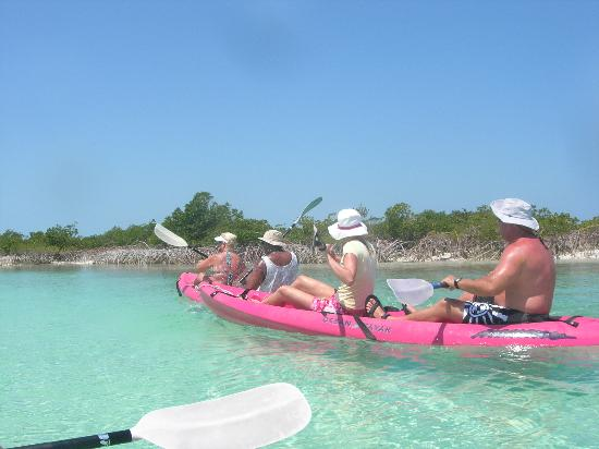 Great Exuma: Kayaking in the mangrove swamps