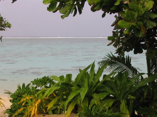 Palm Grove: View from Matenga beachfront deck.