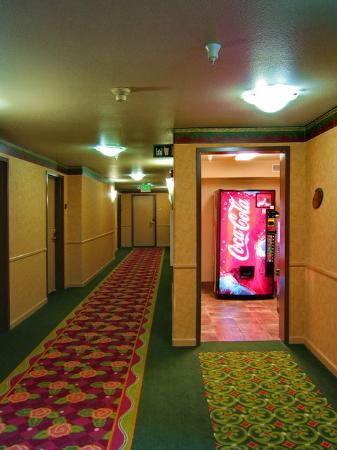 Best Western Plus Capitola By-The-Sea Inn & Suites: View of a typical hallway.