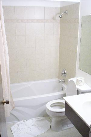 The Recreation Inn & Suites: clean bathroom