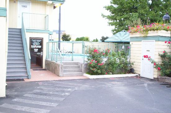 The Recreation Inn & Suites: outdoor pool