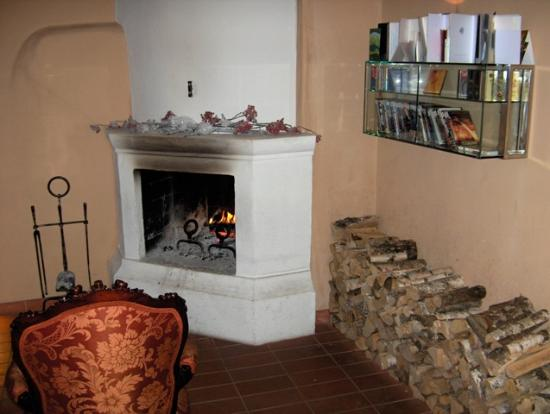 Three Sisters Hotel : Reception - welcoming open log fire and DVD library