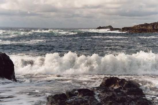 A Snug Harbour Inn: The Wild Pacific