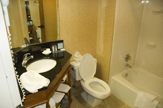 Hampton Inn Pittsburgh / Greentree: Remodeled bathroom.  Hotel not as bad as other reviews indicate, actually a decent stay.