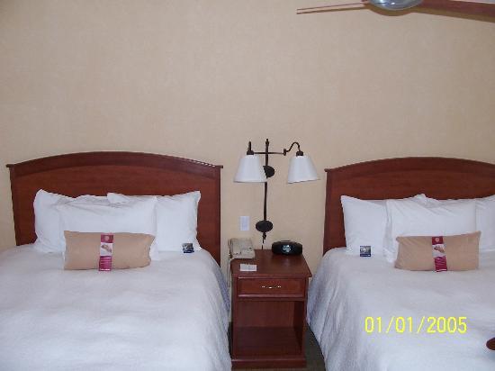 Hampton Inn & Suites Denver-Speer Boulevard: our room