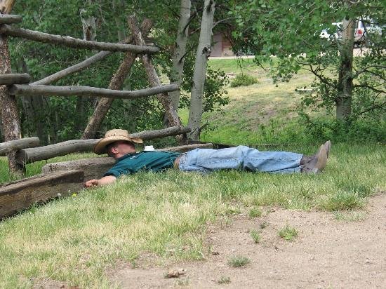 Elk Mountain Ranch: Naptime after a long ride!