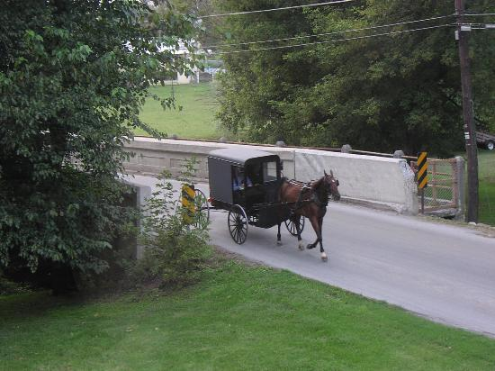 Creekside Inn: Amish Buggy