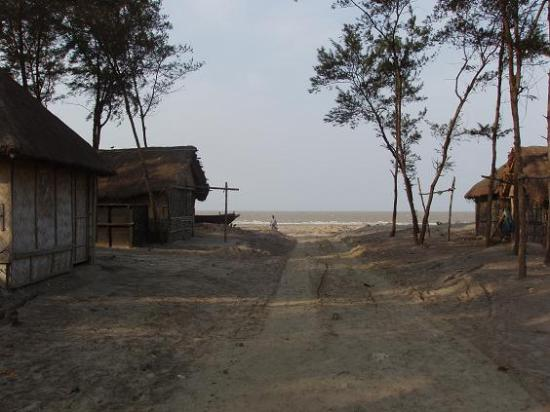 Bakkhali : The trail to Fraserganj beach - the houses are part of a fishermen colony