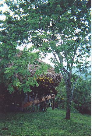 Cahal Pech Village Resort Photo