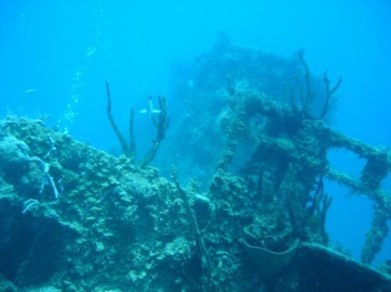 Couples Sans Souci: Wreck diving