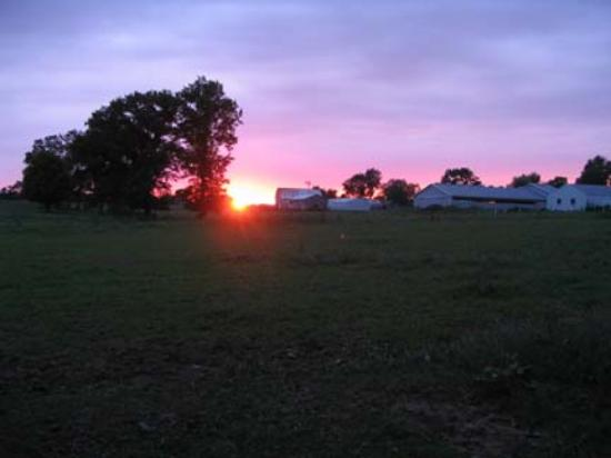 Shipshewana Campground & Amish Log Cabin Lodging: Sunset taken from campground