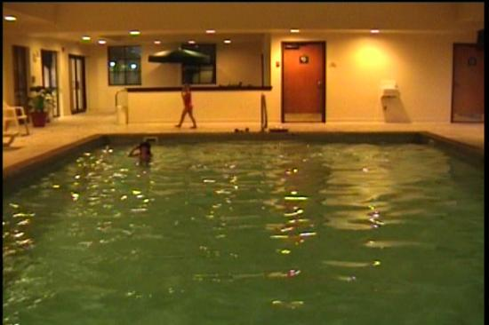 Wingate By Wyndham Indianapolis Airport-Rockville Rd.: The pool (imaged from my camcorder)