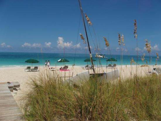 Royal West Indies Resort: Beach from RWI