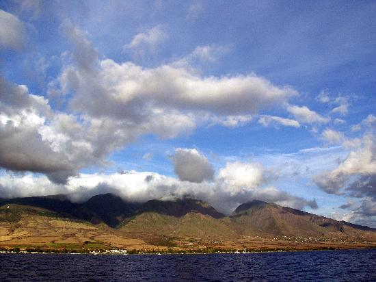 Scotch Mist Sailing Charters : View of Lahaina.